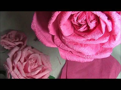 Crepe Paper Rose Sped Up