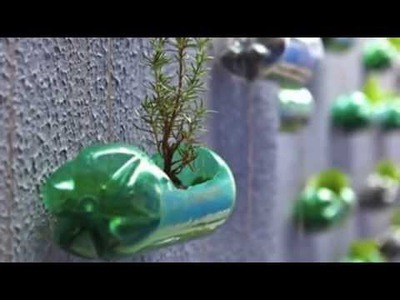 DIY  Creation of a modern garden with upcycling plastic bottles