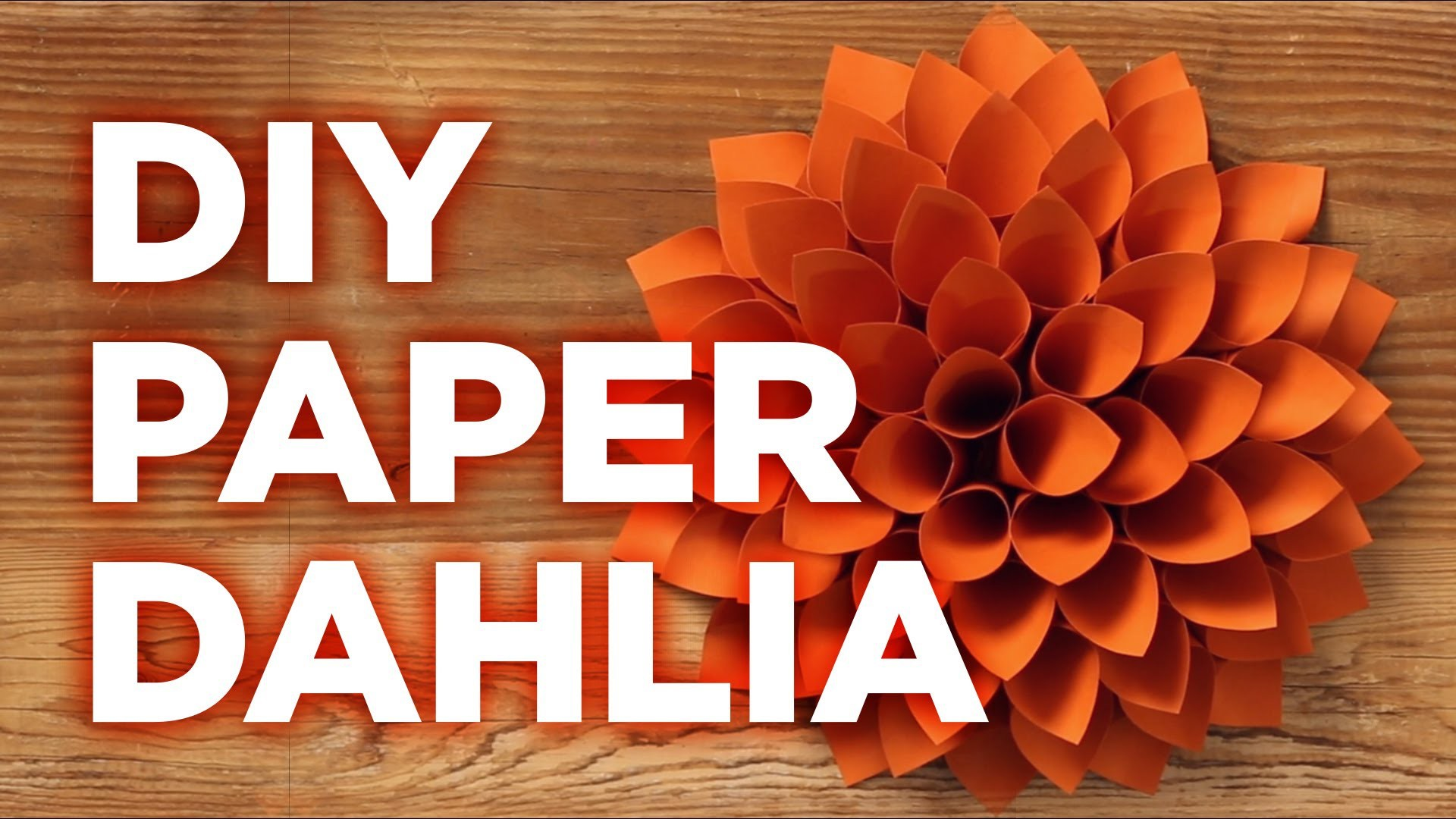 Giant Paper Dahlia: Pinterest Inspired - HGTV - Weekday Crafternoon