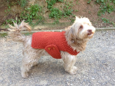 How to Loom Knit a Dog Sweater. Coat (DIY Tutorial)