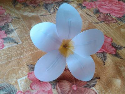 Paper Crafts Flower: Frangipani Plumeria Eezhachempakam Paper Flower