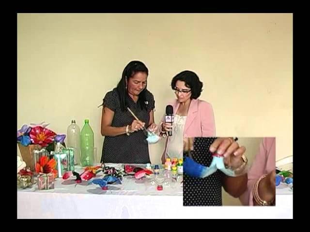 Programa Artes e Ofícios - Aprenda a fazer borboletas de garrafa pet