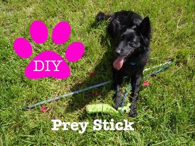 DIY Dog Toy: Prey Stick