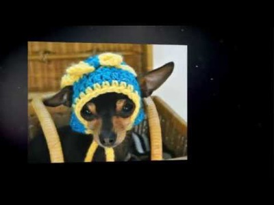 Handmade Hats For Dogs!