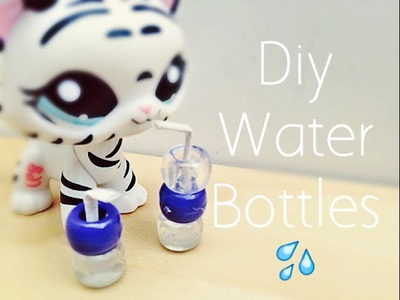 DIY Lps Water Bottle