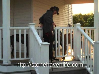DIY No-Sag Deck Gates for Pets