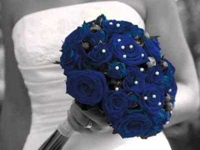 """Blue"" Wedding and Social Stationery album by Carlson Craft"