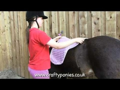 PONY LESSONS: How to put a saddle on