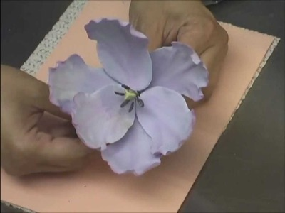 Tulips And Hydrageas DVD Preview With Kaye Hartman Petal Crafts