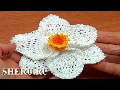 Learn How To Crochet 3D Narcissus Flower Урок 68 часть 3 из 3 Цветы вязаные крючком