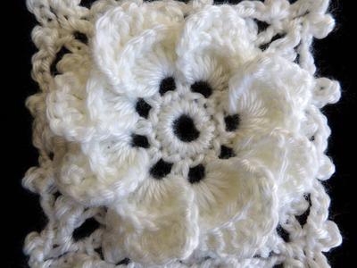 Crochet : Formando un Cuadrado con la Flor de 8 Petalos