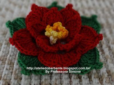 Flor de Natal parte-1