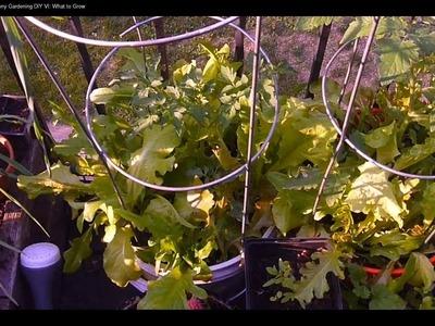 Apartment Balcony Gardening DIY VI: Cramming in Veggies