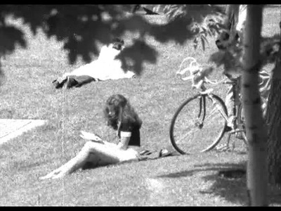 Peter Coukis The Tree (1973) love song.wmv
