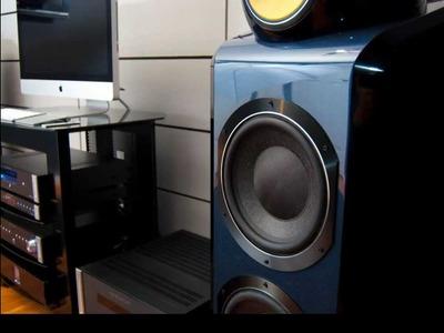 B&W 800D DIY Speaker