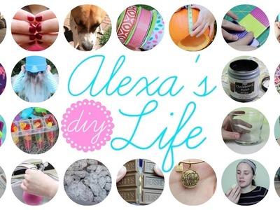 I'm Defying Gravity | Alexa's DIY Life