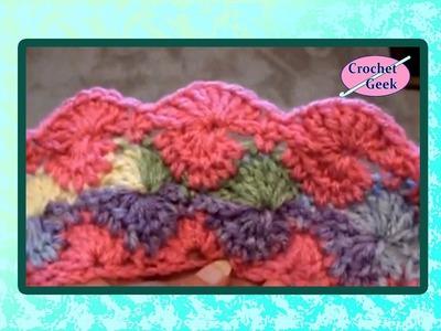 Crochet Round Shell - Catherine's Wheel - Harlequin Stitch - Double Crochet Crochet Geek
