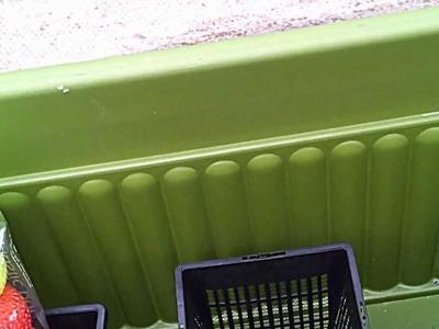 DIY pond veggie filter