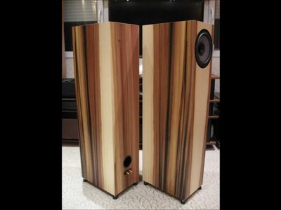 Diy speaker projects build for customers