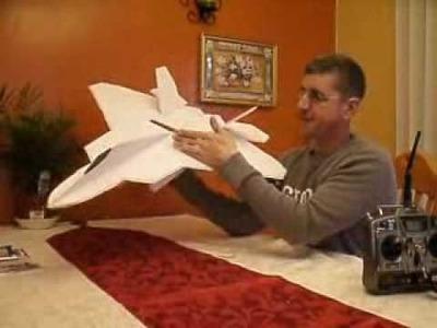 SCRATCH BUILT F-22 RAPTOR