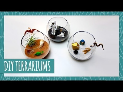 DIY Terrariums - HGTV Handmade