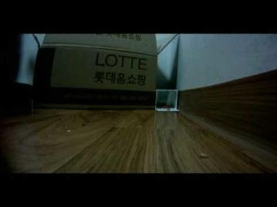 DIY Hamster Trap