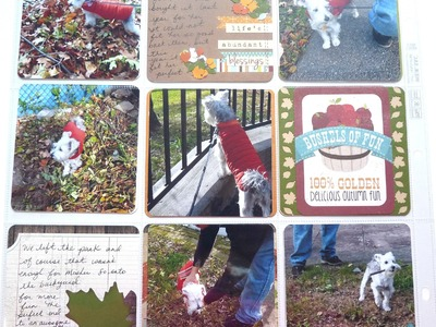 Scrapbook Project : Document Life Process: A Day of Fall Memories