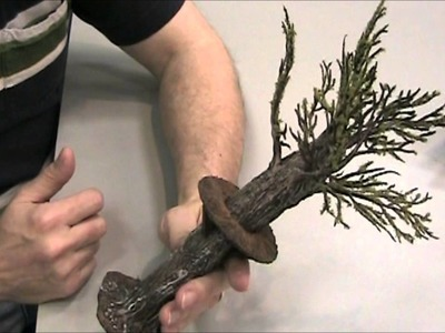 Challenge Your PCs with a TREE SNIPER PERCH for Your D&D Encounter (DM's Craft, Short tip, Ep 30)