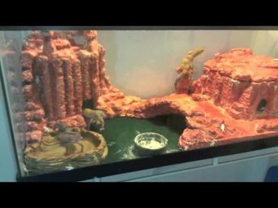 DIY: Nice Custom Leopard Gecko Desert Canyon Theme Setup Tips Lizard Landscapes