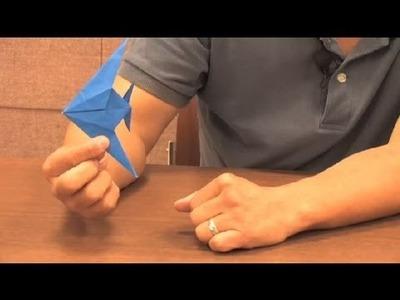 Traditional Origami Fish : Origami Animals