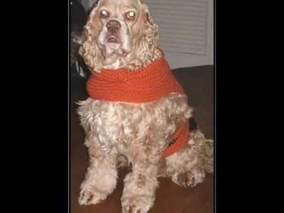 Crochet: Dog and Baby Sweaters
