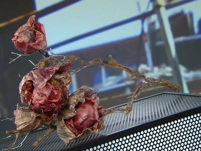 Silk Fiber Lamps | How It's Made