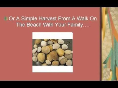 Seashell Crafts - Seashell Crafts Are A Blast For All