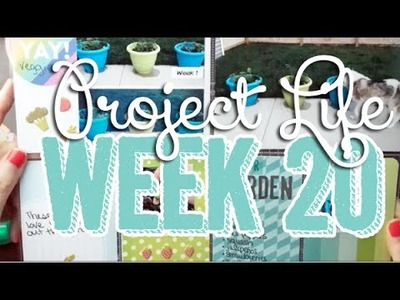 464: Week 20 Project Life 2014 Scrapbook Process - Using Strawberry, Freckled Fawn, & Studio Calico