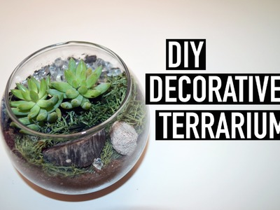 DIY Decorative Terrarium | The Fashion Citizen