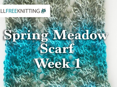 Knit Along: Spring Meadow Scarf Week 1