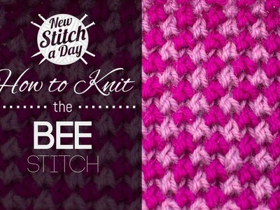 How to Knit the 2 Color Bee Stitch