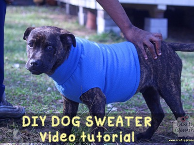 How to Make a Dog Sweater - DIY Tutorial