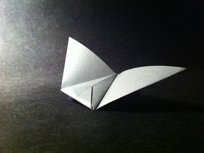 Origami Paper Plane. Flying Wing