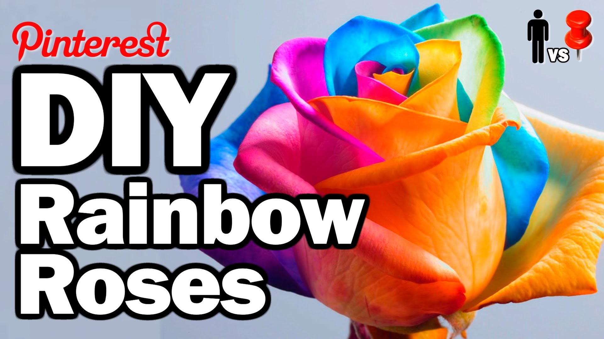 DIY Rainbow Roses - Man Vs. Pin #26
