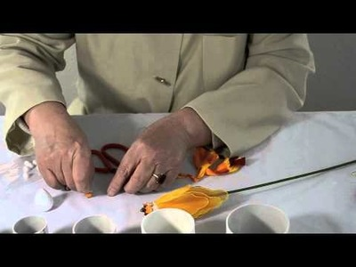 How to Make a Goldfish