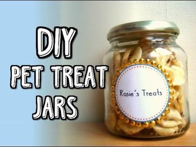 DIY Pet Treat Jars | RosieBunneh