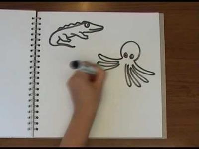 Why do Chameleons change colour? - Naked Science Scrapbook