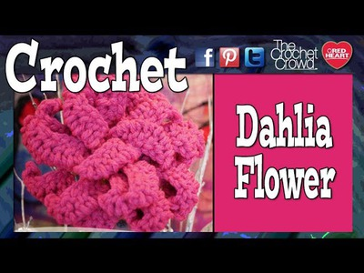 How to Crochet A Dahlia Flower