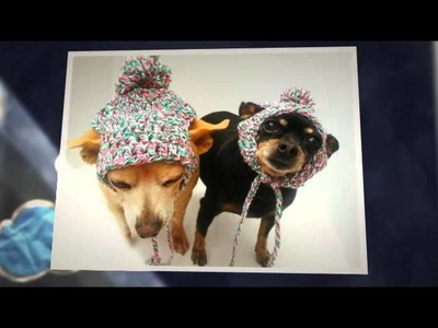 Christmas Dog Hats By C&C Creative Creations