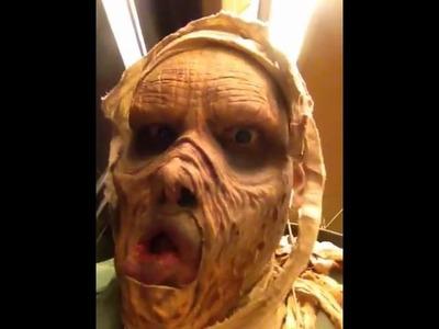 DIY Mummy costume 2011