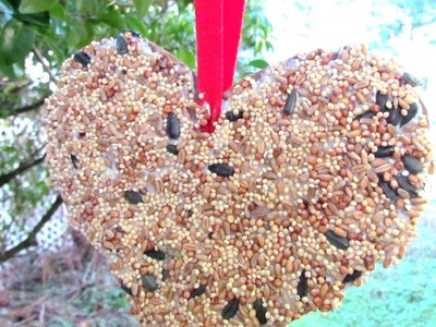 How to make a Bird Feeder Valentine's Day Heart Craft