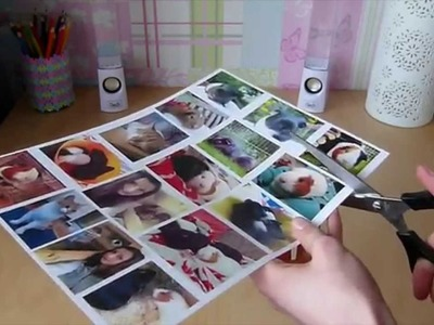 DIY Pet Picture Display