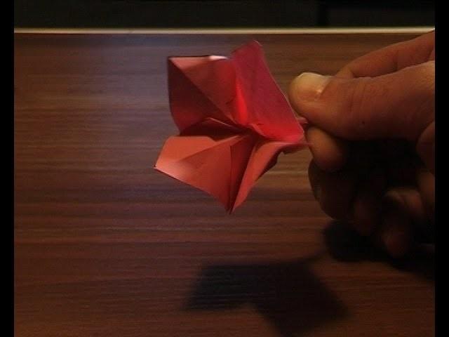 Origami fleur flower.mpg