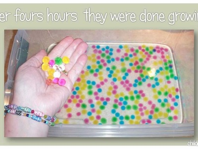 We Grew Water Beads
